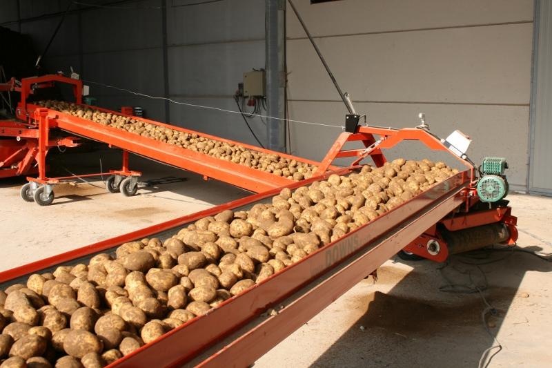 Aardappel transportband